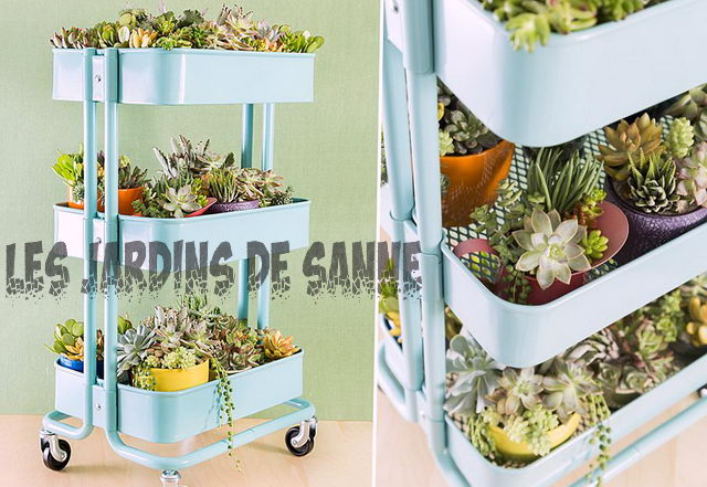 Ein Indoor-Garten How To: DIY Indoor Garden Zimmer Ideen